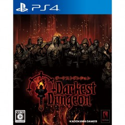 Kadokawa Games Darkest Dungeon SONY PS4 PLAYSTATION 4
