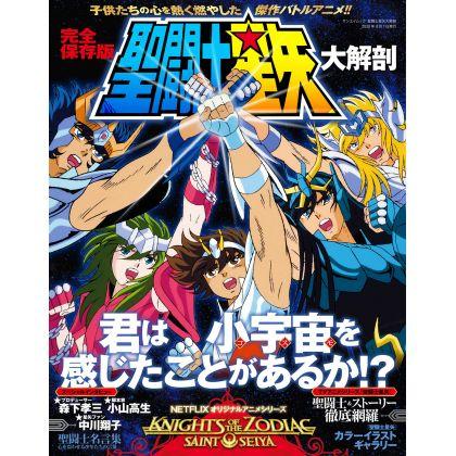 Mook - Saint Seiya Anime...